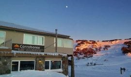 Corroboree Perisher